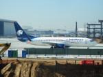 TUILANYAKSUさんが、ロサンゼルス国際空港で撮影したアエロメヒコ航空 737-852の航空フォト(写真)