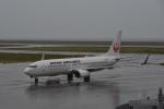 ワイエスさんが、山口宇部空港で撮影した日本航空 737-846の航空フォト(写真)