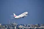 beimax55さんが、羽田空港で撮影した日本航空 737-846の航空フォト(写真)