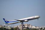 yuuki1214さんが、伊丹空港で撮影した全日空 777-381/ERの航空フォト(写真)