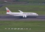 garrettさんが、鹿児島空港で撮影した日本航空 787-8 Dreamlinerの航空フォト(写真)