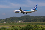 hotaruさんが、岡山空港で撮影した全日空 737-881の航空フォト(写真)