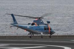 飛行機ゆうちゃんさんが、横浜ヘリポートで撮影した神奈川県警察 AW109SPの航空フォト(飛行機 写真・画像)