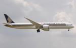 hs-tgjさんが、スワンナプーム国際空港で撮影したシンガポール航空 787-10の航空フォト(写真)