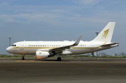 スポット110さんが、羽田空港で撮影したスカイ・プライム A319-115CJの航空フォト(写真)