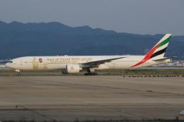 キイロイトリさんが、関西国際空港で撮影したエミレーツ航空 777-31H/ERの航空フォト(写真)