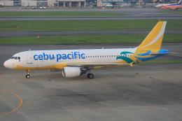 板付蒲鉾さんが、福岡空港で撮影したセブパシフィック航空 A320-214の航空フォト(飛行機 写真・画像)
