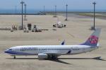 STAR TEAMさんが、中部国際空港で撮影したチャイナエアライン 737-8SHの航空フォト(写真)