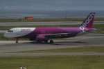 endress voyageさんが、関西国際空港で撮影したピーチ A320-214の航空フォト(写真)