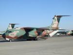 TUILANYAKSUさんが、入間飛行場で撮影した航空自衛隊 C-1の航空フォト(写真)