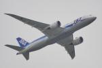 ちゃぽんさんが、羽田空港で撮影した全日空 787-8 Dreamlinerの航空フォト(写真)