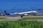 HISAHIさんが、新石垣空港で撮影した全日空 787-9の航空フォト(写真)