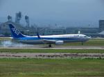 おっつんさんが、小松空港で撮影した全日空 737-881の航空フォト(飛行機 写真・画像)