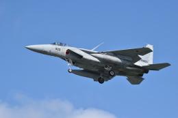 航空フォト:02-8920 航空自衛隊 F-15J Eagle