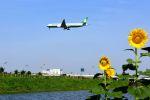 まいけるさんが、スワンナプーム国際空港で撮影したエバー航空 777-35E/ERの航空フォト(写真)