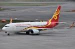 Dojalanaさんが、新千歳空港で撮影した海南航空 737-84Pの航空フォト(写真)