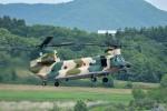 Dojalanaさんが、函館空港で撮影した航空自衛隊 CH-47J/LRの航空フォト(写真)
