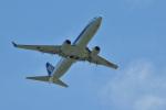 うめたろうさんが、那覇空港で撮影した全日空 737-881の航空フォト(写真)