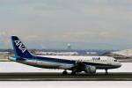 にしやんさんが、新千歳空港で撮影した全日空 A320-211の航空フォト(写真)