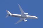 多楽さんが、茨城空港で撮影したエティハド航空 787-9の航空フォト(写真)