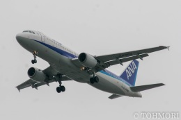 遠森一郎さんが、福岡空港で撮影した全日空 A320-211の航空フォト(飛行機 写真・画像)