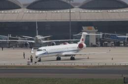 TAOで撮影されたTAOの航空機写真