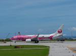チャッピー・シミズさんが、那覇空港で撮影した日本トランスオーシャン航空 737-8Q3の航空フォト(写真)