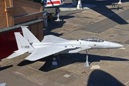りんたろうさんが、シュパイアー飛行場で撮影したアメリカ空軍 F-15A-11-MC Eagleの航空フォト(写真)