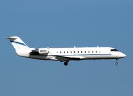 voyagerさんが、羽田空港で撮影したウィルミントン・トラスト・カンパニー CL-600-2B19 Regional Jet CRJ-100SEの航空フォト(飛行機 写真・画像)