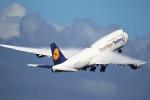 mktさんが、羽田空港で撮影したルフトハンザドイツ航空 747-830の航空フォト(写真)