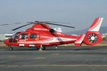 JPN Spotterさんが、八尾空港で撮影した大阪市消防航空隊 AS365N3 Dauphin 2の航空フォト(写真)