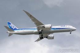 遠森一郎さんが、福岡空港で撮影した全日空 787-9の航空フォト(飛行機 写真・画像)