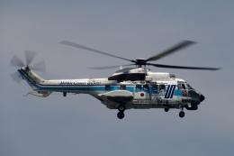 飛行機ゆうちゃんさんが、羽田空港で撮影した海上保安庁 AS332L1 Super Pumaの航空フォト(飛行機 写真・画像)