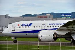 6306さんが、福岡空港で撮影した全日空 787-9の航空フォト(飛行機 写真・画像)