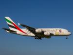 Mame @ TYOさんが、成田国際空港で撮影したエミレーツ航空 A380-861の航空フォト(写真)