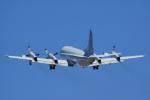 ちゃぽんさんが、アバロン空港で撮影したオーストラリア空軍 RP-3C Orionの航空フォト(写真)