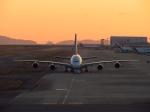 関西国際空港 - Kansai International Airport [KIX/RJBB]で撮影されたタイ国際航空 - Thai Airways International [TG/THA]の航空機写真