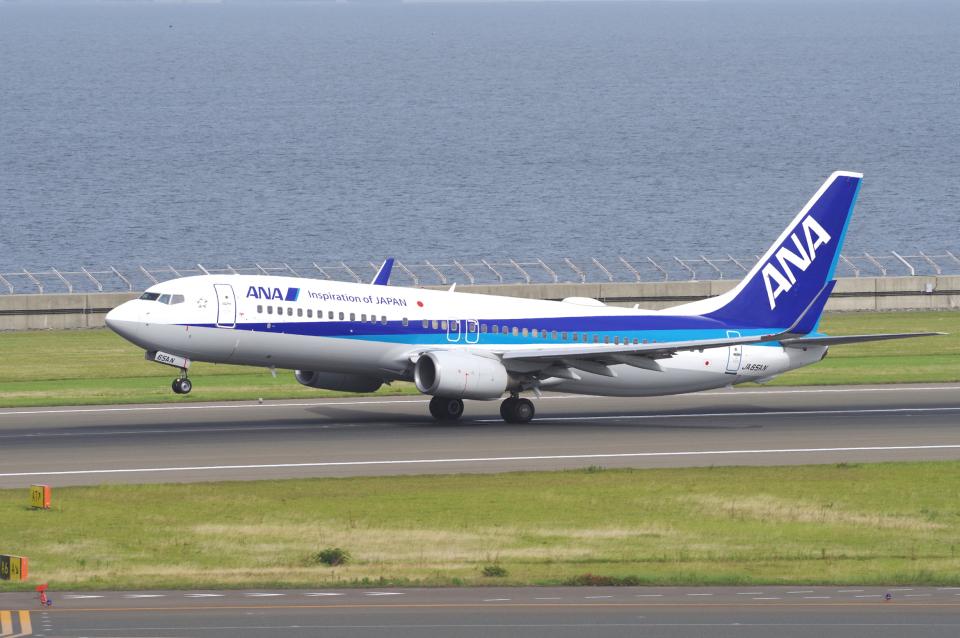 yabyanさんの全日空 Boeing 737-800 (JA65AN) 航空フォト
