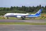sumihan_2010さんが、成田国際空港で撮影した全日空 787-8 Dreamlinerの航空フォト(写真)