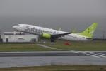 reonさんが、中部国際空港で撮影したソラシド エア 737-81Dの航空フォト(写真)