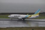 reonさんが、中部国際空港で撮影したAIR DO 737-781の航空フォト(写真)