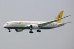 トールさんが、香港国際空港で撮影したロイヤルブルネイ航空 787-8 Dreamlinerの航空フォト(写真)