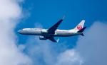 まさおみんさんが、アントニオ・B・ウォン・パット国際空港で撮影した日本航空 737-846の航空フォト(写真)