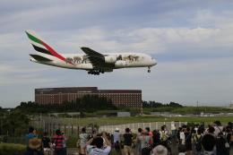 ☆ライダーさんが、成田国際空港で撮影したエミレーツ航空 A380-861の航空フォト(飛行機 写真・画像)