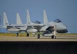 がいなやつさんが、築城基地で撮影した航空自衛隊 F-15J Eagleの航空フォト(写真)