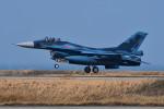はるかのパパさんが、築城基地で撮影した航空自衛隊 F-2Aの航空フォト(写真)