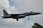 mikechinさんが、嘉手納飛行場で撮影したアメリカ空軍 F-15C-23-MC Eagleの航空フォト(写真)
