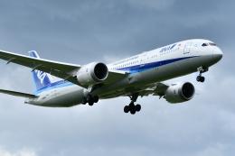 k-spotterさんが、福岡空港で撮影した全日空 787-9の航空フォト(飛行機 写真・画像)
