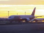 tmkさんが、関西国際空港で撮影したジェットスター 787-8 Dreamlinerの航空フォト(写真)