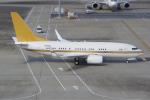 PASSENGERさんが、羽田空港で撮影した南山公務 737-7ZH BBJの航空フォト(写真)